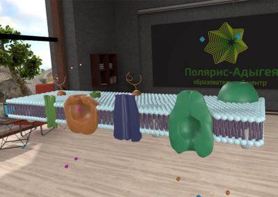 VR-обучение: Биология для школьников