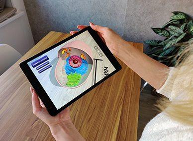 AR-обучение: Биология для школьников
